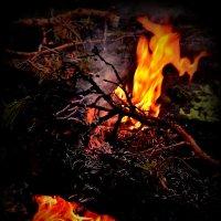 огонь завораживает... :: Лариса Красноперова