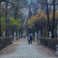 И в летний сад... :: vladimir Bormotov