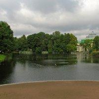 Пруд в Таврическом саду :: максим лыков