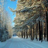 Зимняя дорога.Название :: MEXAHNK НИКОНОВ