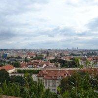 Панорама :: zhanna-zakutnaya З.