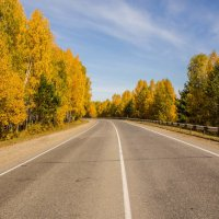 Дорога в осень :: Alex Dushutin
