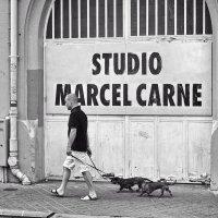 studio marcel carne, Paris :: Vladimir Zhavoronkov