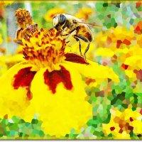 Пчелка :: Лидия (naum.lidiya)