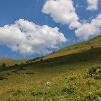 Софийская долина. Отроги хребта Чегет-Чат :: Vladimir 070549