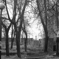Дорога к храму :: Петр Мерзляков