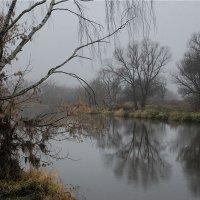 в ноябре :: sergej-smv