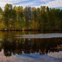 Остров :: Sergey Apinis