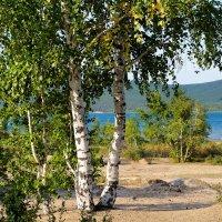 Боровое (курортная зона) :: Svetlana Bikasheva