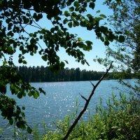 Зелёное озеро.  посёлок Будогощь :: Виктор Елисеев