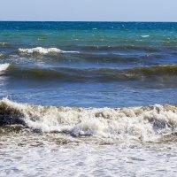 Шторм на Черном море :: Николай Николенко