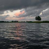 Волнение на озере :: Валерий Талашов