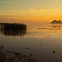 Предрассветная тишина. :: Виктор Евстратов