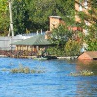 Почти пик наводнения .30км от Хабаровска с Князе-Волконское :: Николай Сапегин