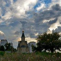 После грозы :: Ольга Голубева