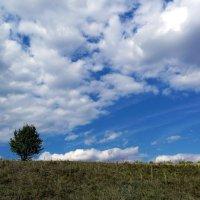 пейзаж4 :: александр горшков