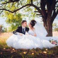 сказочная свадьба :: Olga Tarasenko