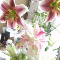 Лилии цветут :: Galina194701