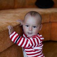 Рафаель 9 месяцев :: Диана Матисоне