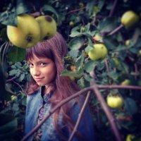 В яблоках :: Елена Кузнецова