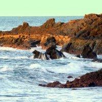 Атлантический берег :: Svetlana Galvez