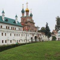 Новодевечий монастырь :: Илья