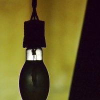Лампа за лампой :: Oleg Khot