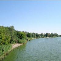 Отдых у реки... :: Тамара (st.tamara)
