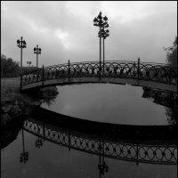 Мостик на озере. :: Николай Емелин