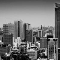 Токио с высоты птичьего полета :: Олег Неугодников
