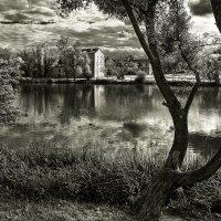 У пруда :: Sigizmund Baobab