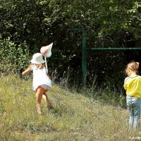 Ловля бабочек :: Лидия (naum.lidiya)