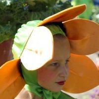 Твой  выход ,цветочек!!!!! :: A. SMIRNOV