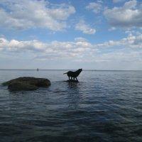 На острове Буяне))) :: Timtano4ka Татьяна