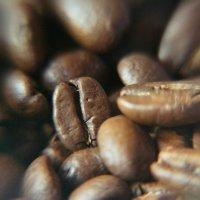 Кофейные зерна :: Artem Andreev