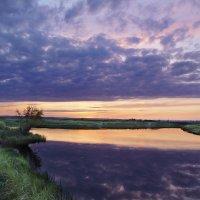 Ива. Лиловый закат :: Виктор Четошников