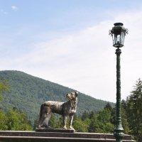 Румыния, окрестности замка Пелеш :: tet