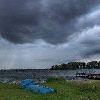Дождь :: виктория Скрыльникова