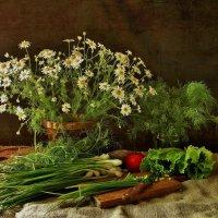 Молодая зелень :: Валентина Налетова