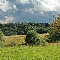 Это - недалеко от истока Волги. :: Олег Попков