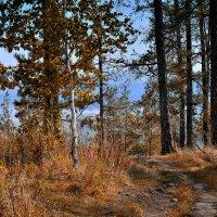 Осень в горах. :: Сергей Адигамов