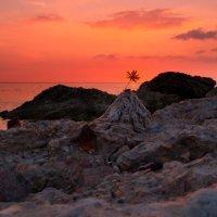 Каменный берег :: Лёха Дидус