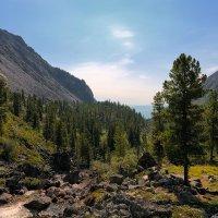 Долина горной реки :: Виктор Никитин
