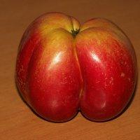 Адамово яблоко :: muh5257