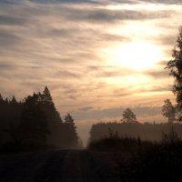 Осень   утро :: Лёха Дидус