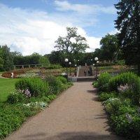 Парк Кадриорг .. путь в розариум :: laana laadas