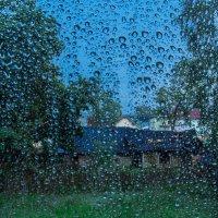 Вид за окном :: Ольга Палей