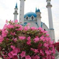 Цветы у мечети :: Станислав Соколов