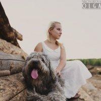Пес!!! :: Ольга Никонорова