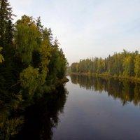 Утро на берегу реки. :: Алексей Хаустов